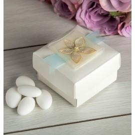 Divine Favour Box